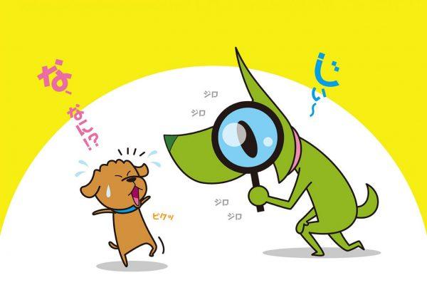 愛犬の健康チェック