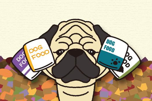 愛犬を迎え入れる前に、ケージやトイレ、ドッグフード、ベッドなど必要な物を用意しておきましょう