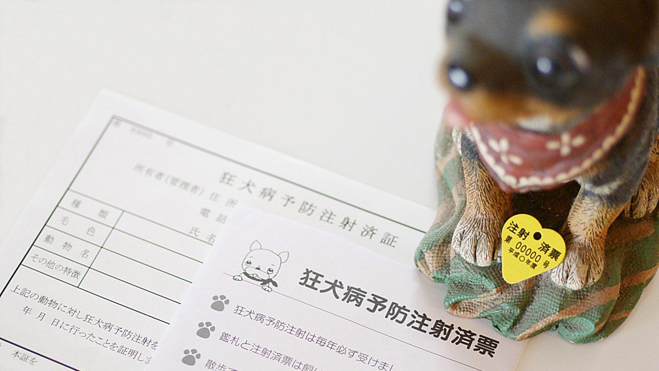犬の登録と狂犬病予防注射、鑑札 混合ワクチンの接種