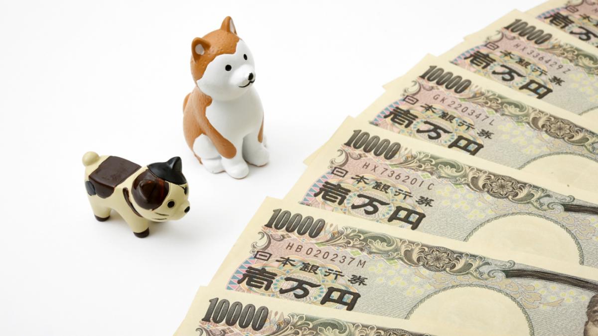 犬を飼う際にかかる費用はどれくらい? 獣医療費 食費