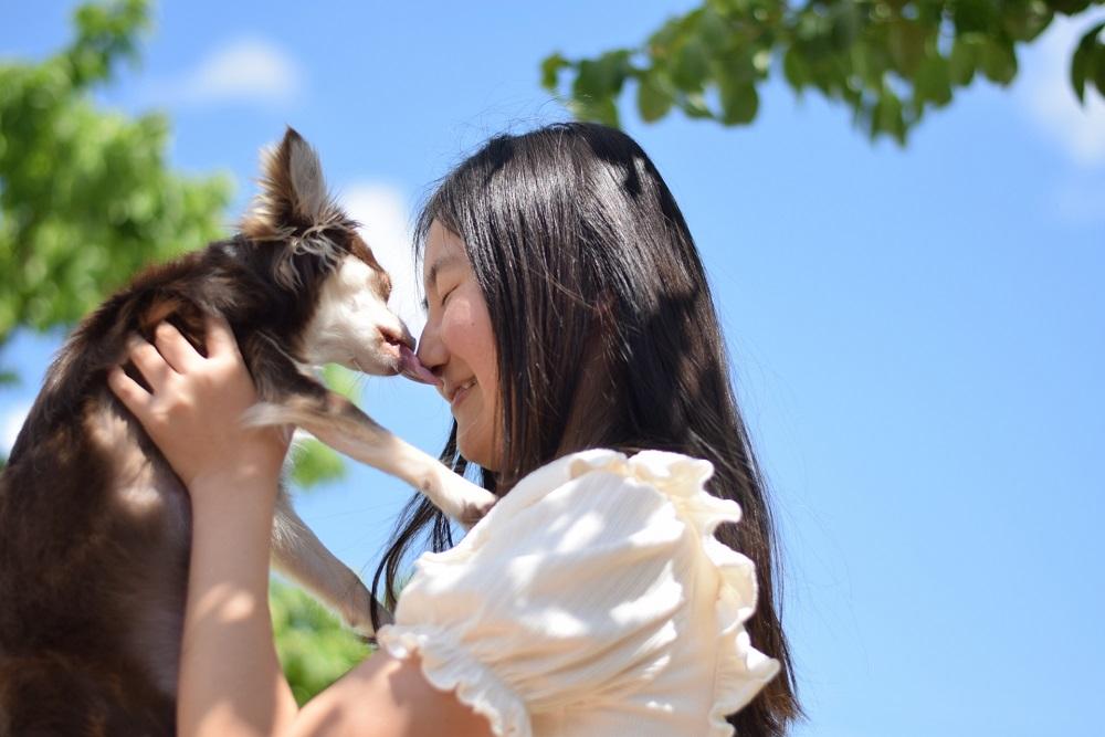 愛犬の将来を考えた選択を!