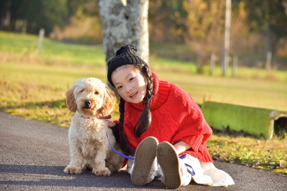 気持ちのいい季節、愛犬のお散歩も快適に……