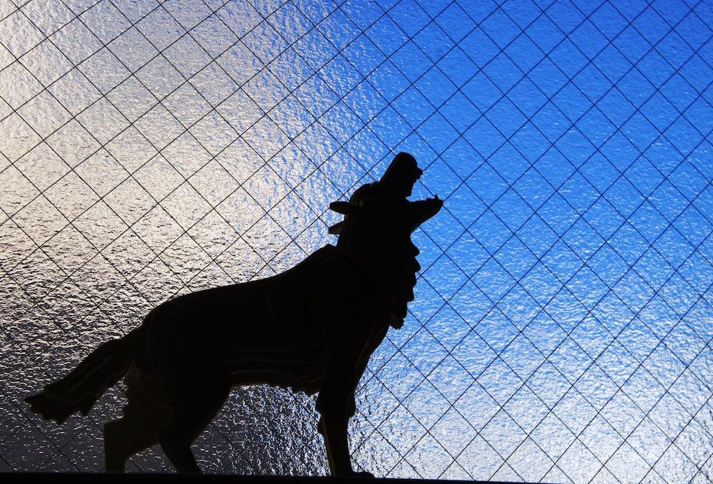 ケース別犬の問題行動【無駄吠え】