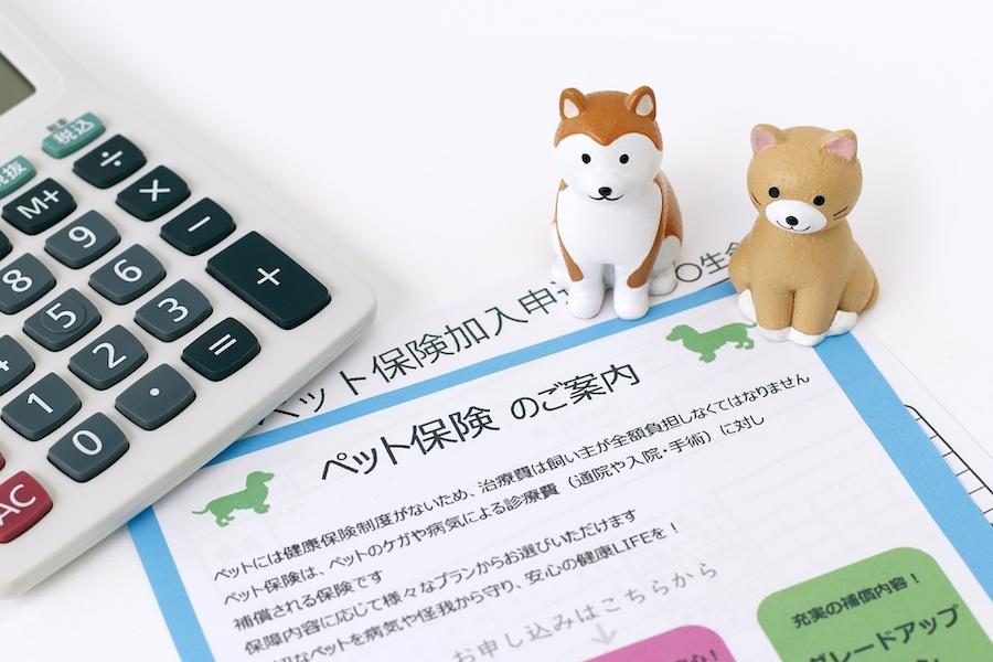 ペット保険の仕組みや補償内容
