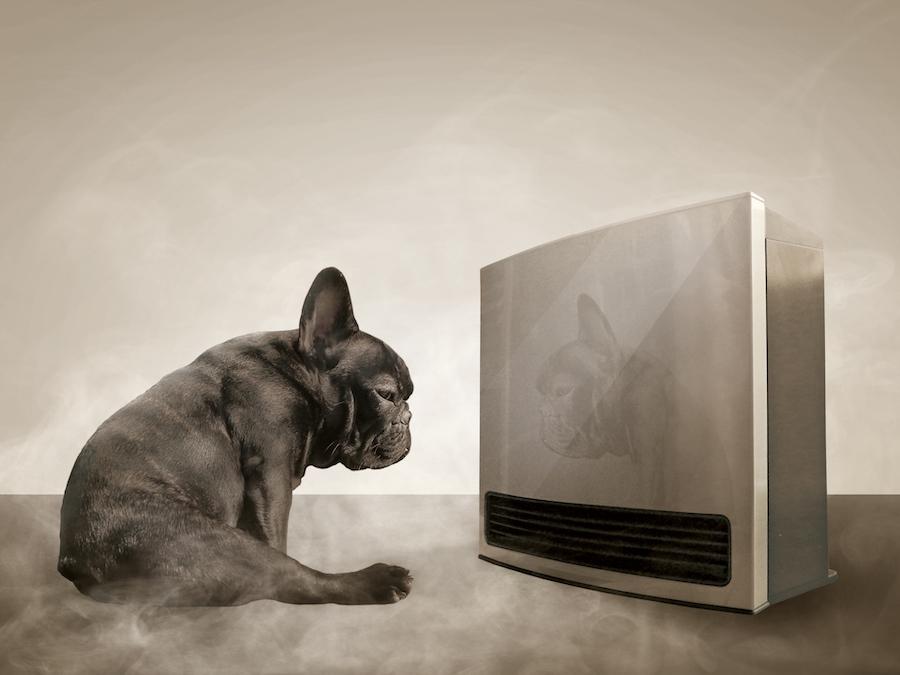適温に保つための冬の防寒対策の方法は?