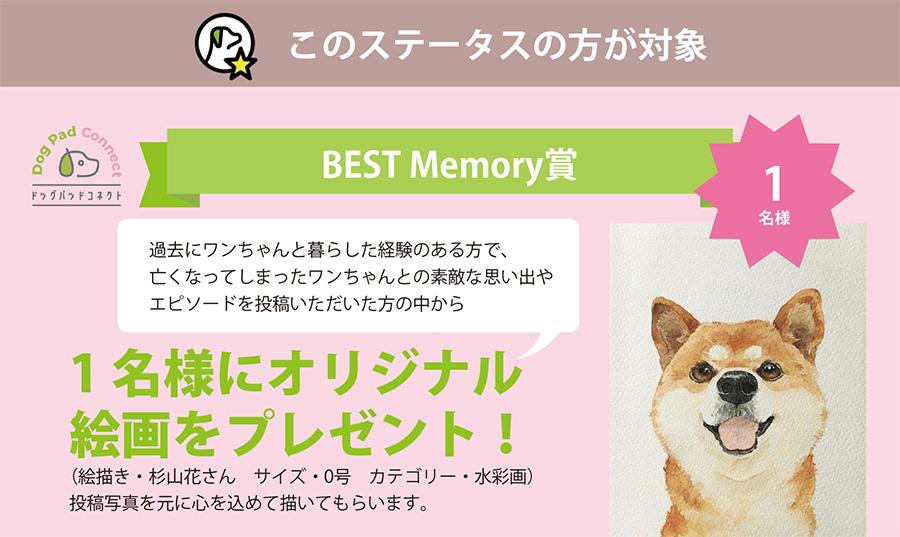 愛犬のオリジナル絵画 杉山花 Memory DOGPAD and LIFE
