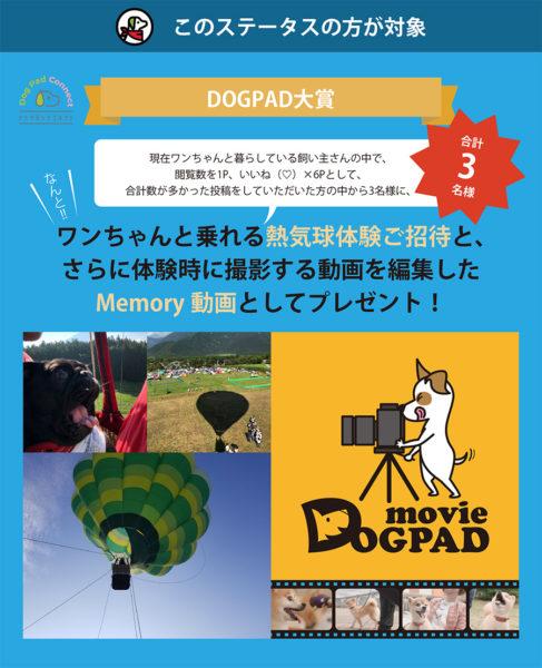 犬と一緒に熱気球体験 ドッグパッドコネクト投稿キャンペーン 気球 memory動画 DOGPAD and LIFE