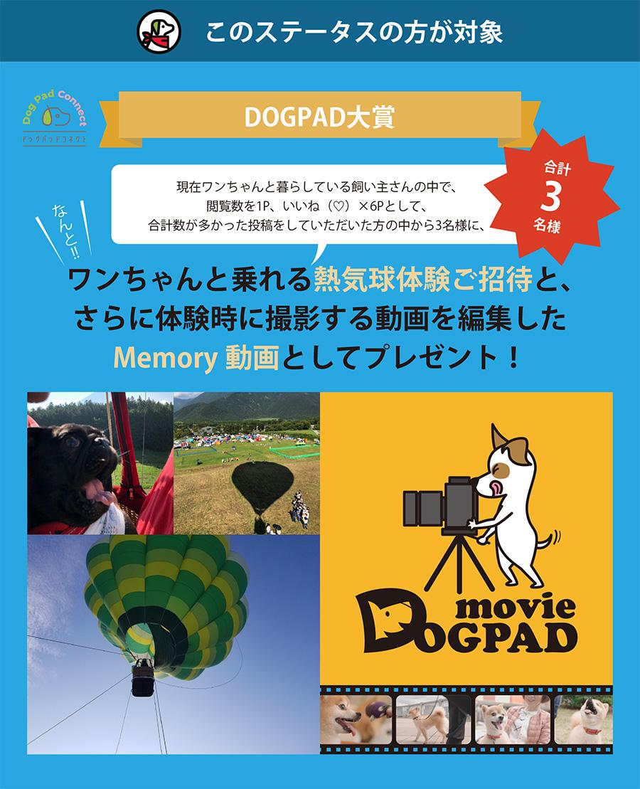 ドッグパッドコネクト投稿キャンペーン 気球 memory動画 DOGPAD and LIFE