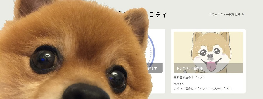楽しいコンテンツが盛りだくさん!新しいワンちゃん特化型SNS「ドッグパッドコネクト」プレオープンが間近!