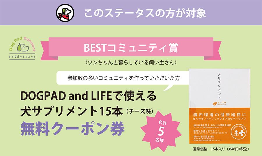 ドッグパッドコネクト 犬サプリメント腸内環境の健康にチーズ味 DOGPAD and LIFE