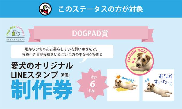 愛犬のLINEスタンプ制作券 ドッグパッドコネクトキャンペーン LINEスタンプ DOGPAD